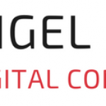 nigel-kay-digital-consulting-logo