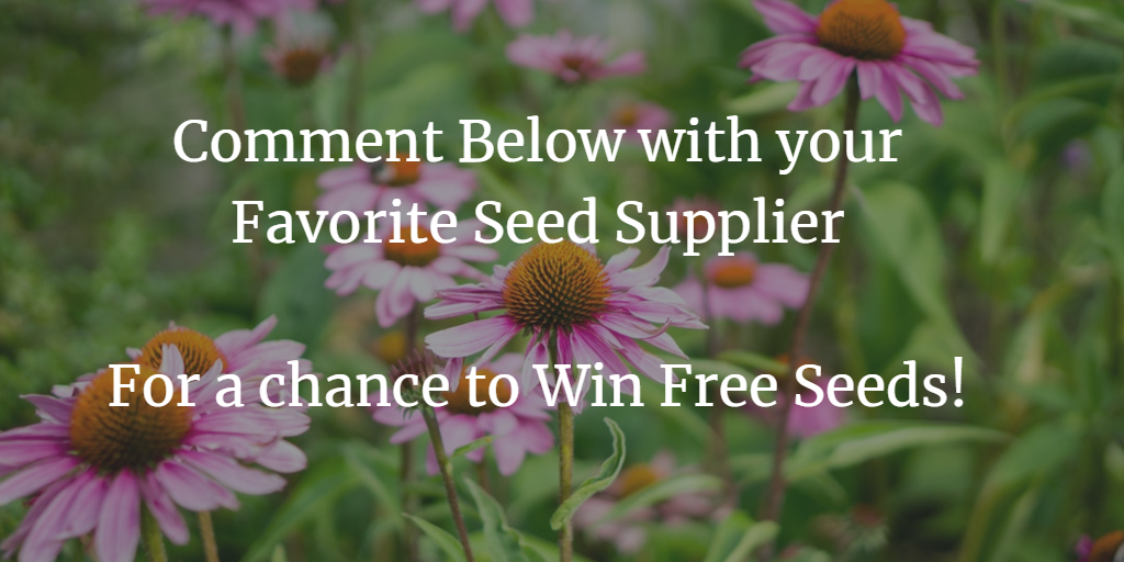 Best Organic Heirloom Seed Suppliers