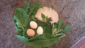 Oyster Mushrooms, Eggs, Sorrel, Sage, Dandelion, Plantain and Nettle