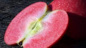 Rubiayat Red Flesh Apple